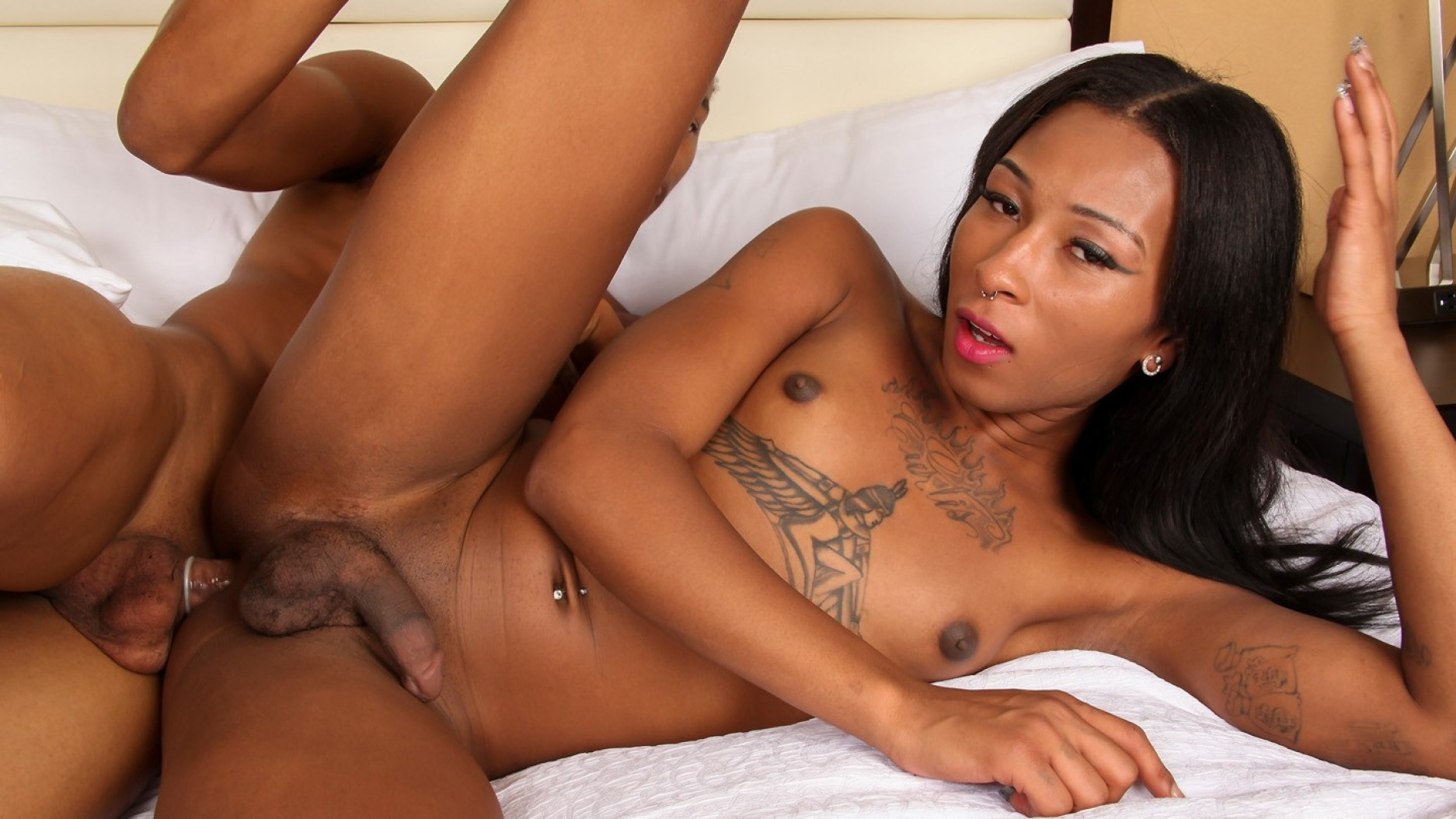Ebony shemale sex video